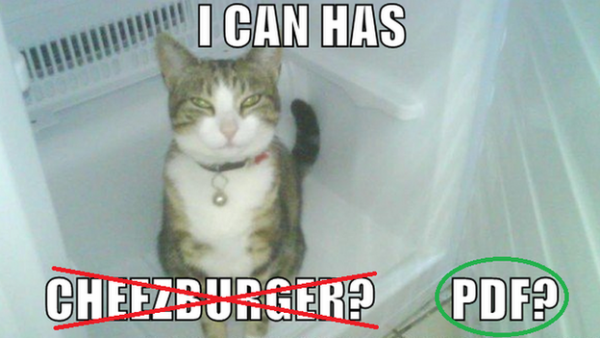 Cat asking for a PDF